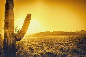 Energy Audit Sun City West AZ